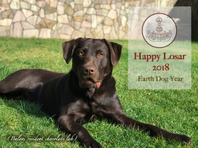 Happy Losar 2018, Earth-dog Year