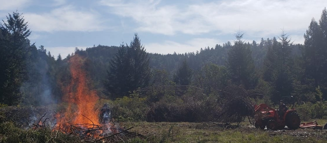 Forestry & Fire Prevention at Ati Ling-PPI
